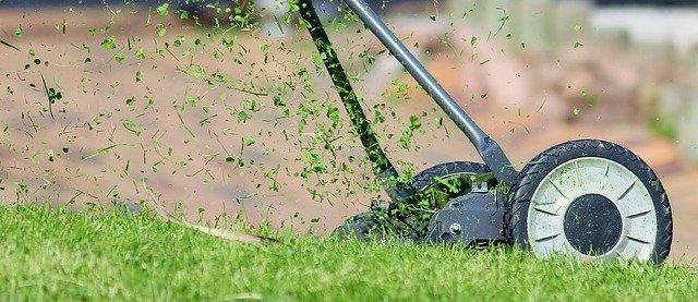 Tondeuse à gazon manuelle: bichonnez votre pelouse tout en douceur